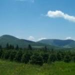 ashe mountain real estate